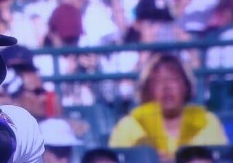 金髪ニキはいつも甲子園で応援している